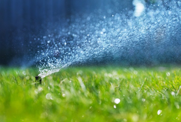 irrigation sprinkler system installation for home and business